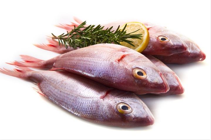 ローズマリーと魚